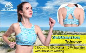 Wholesale New Custom Ladies Sexy High Supportive Neck Sports Bra pictures & photos