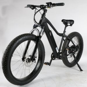 Fat Electric Bike pictures & photos