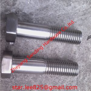 Stainless Steel DIN931 Hex Bolt pictures & photos