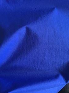 430t 100% Nylon Elastic Fabric Semi Dull Ripstop Taffeta Fabric with TPU and Mesh 5k/5k pictures & photos