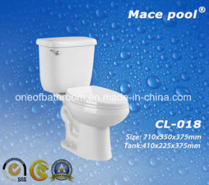 Sanitary Ware Two Piece Ceramic Washdown Toilet (CL-018) pictures & photos