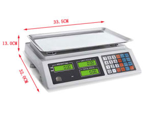 Price Weighing Electronic Platform Scale Factory Price pictures & photos