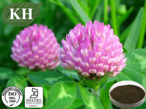 Red Clover Extract; Formononetin 98% by HPLC pictures & photos