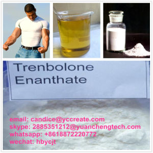 Bodybuliding Steroid Powder Parabolan/Trenbolone Enanthate for Muscle Growth pictures & photos
