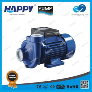 Centrifugal Electric Water Pump (DK) pictures & photos