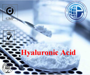 Hyaluronic Acid CAS 9004-61-9 for Polymer Polysaccharid Body Hyaluronic Acid pictures & photos