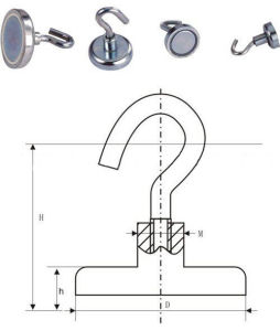 Magnetic Hooks(Br-100220) pictures & photos