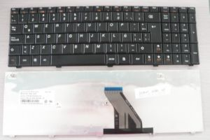 N2l-Sp Sp Keyboard for Lenovo 3000 G560 G430A G460 pictures & photos