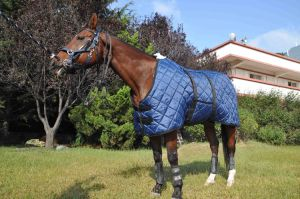 420d Poly Water-Proof and Breathable Stable Rug (NEW-05) pictures & photos