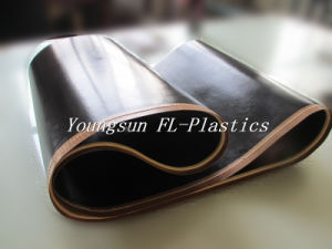 PTFE Endless Belt for Hashima Oshima pictures & photos