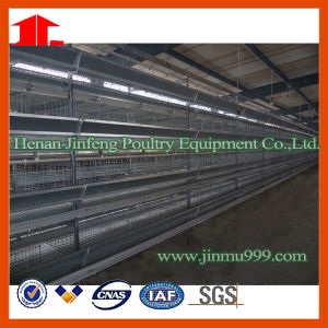 Automatic H Type Chicken Cage pictures & photos
