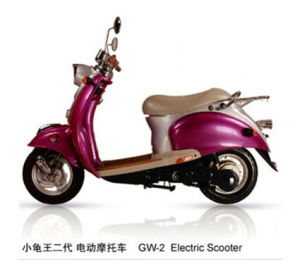ESWN Electric Scooter (GW-1E)