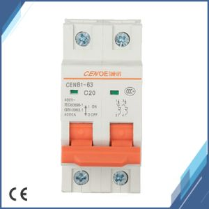 New Style 2p 20A Circuit Breaker for Worldwide Market pictures & photos