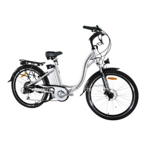 Pas 500W Electric Bicycle (TDF01Z)