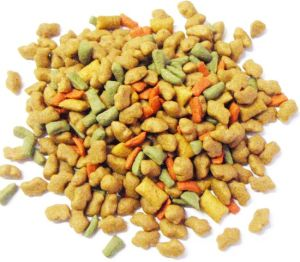 New Products 2014 Dog Food Pellet Machine pictures & photos