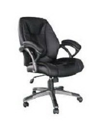 Office Chair (10819-02)