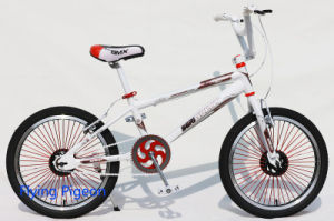 "20"" High Grade Freestyle BMX (FP-FSB-H015) pictures & photos"