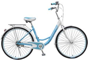 Popular Princess Girl Bikes (FP-LDB-022) pictures & photos