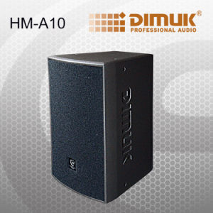 Professional Speaker / Good Quality PA Speaker (HM-A10)