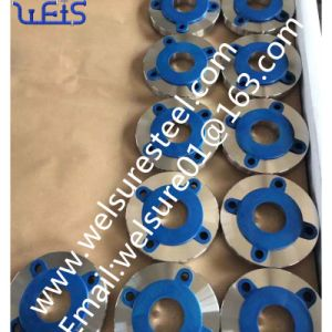 Stainless Steel F 347H F310s Flange