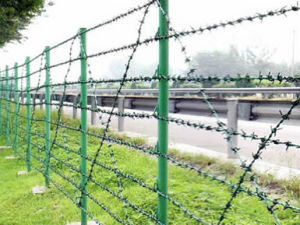 China Facotry PVC Barbed Wire Fence pictures & photos
