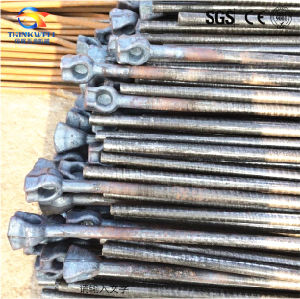 Forged Steel Single Thimble Eye Rod pictures & photos