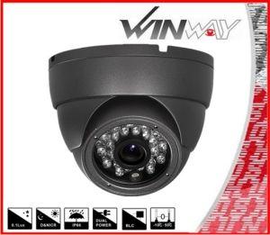 HD Cvi 720p Security Indoor CCTV IR Dome Camera (D501B-CVI)