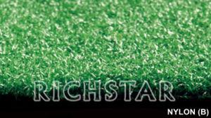Artificial Grass, Golf Turf (Nylon B) pictures & photos