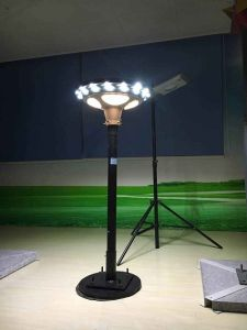 Solar Garden LED Lamp with Lithium Battery for Outdoor pictures & photos