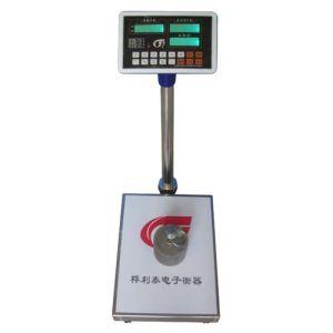 Electronic Platform Scale (TCS-09)