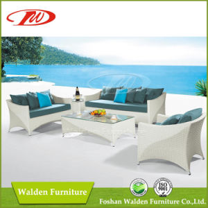 Rattan Furniture/ Outdoor Chair/Rattan Chair (DH-608) pictures & photos