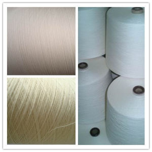 Cotton Eco Fancy Yarn pictures & photos