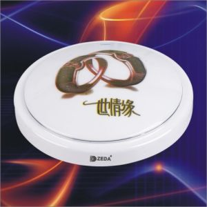 Ceiling Light Fixture (ZD32. T6. C005)
