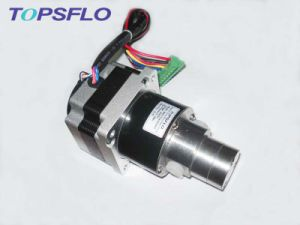 Magnetic Drive Small Gear Pump (DC brushless motor, outside controller) pictures & photos