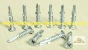 Screw/Specialized in Production Non-Skid Head with Winged Phillips White Zinc Plated Self Drilling Concrete Screw pictures & photos