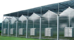 Large Size Multi-Span Design Commercial PC Greenhouse pictures & photos