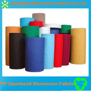 Eco-Friendly PP Spunbonded Non Woven Fabric (20cm-320cm)