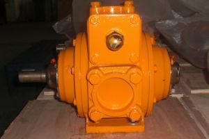 Rotary Vane Pump/Pump/Diesel Pump/Vane Pump/Industrial Pump/Pd Meter/LC Meter/LC Flow Meter/Positive Displacement Flow Meter/Flow Meter pictures & photos