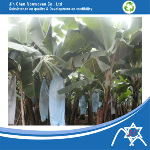 PP Spunbonded Nonwoven for Banana Bag pictures & photos