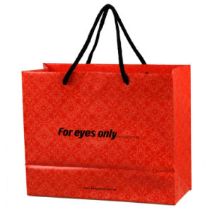 High Quality Printed Gift Shopping Bags for Garments (FLS-8201) pictures & photos