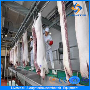 Pig Slaughtering Equipment with High Grade pictures & photos