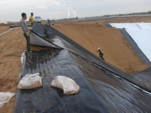 High Density Polyethylene Textured Geomembrane pictures & photos