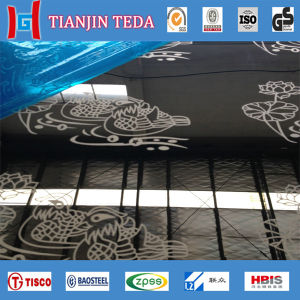 201/304 Decorative Stainless Steel Plate/ Sheet pictures & photos