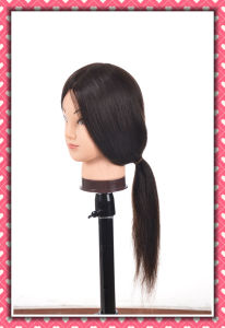 Mannequin Head Natural Human Hair Training Head 26inches for Style pictures & photos