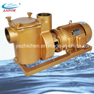 15HP Swimming Pool Pump Electric Water Pump pictures & photos