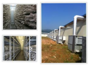 Mushroom Growing Room Climite Control System pictures & photos