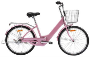 Economical E-Bike (EB09-24)