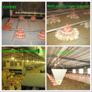 Automatic Poultry Farm Machinery for Breeder Farm pictures & photos