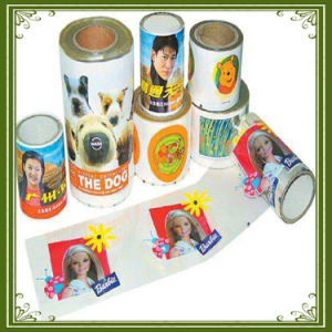 Factory Outlet Heat Transfer Film/Heat Transfer Vinyl pictures & photos