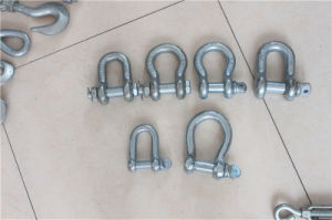 European Type Anchor D Shackle pictures & photos
